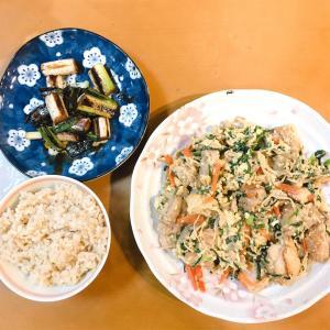鶏もも肉の和風野菜炒めと、おつまみネギ