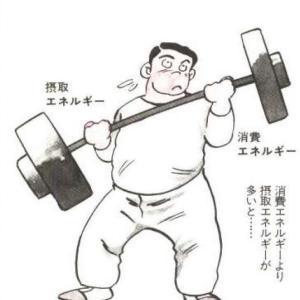 なぜ太ったりやせたりするのですか? again