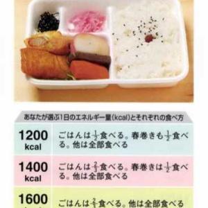 【幕ノ内弁当】