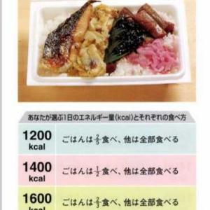【鮭弁当】