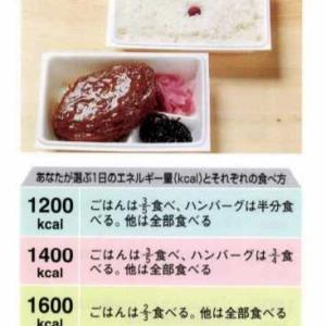 【ハンバーグ弁当】