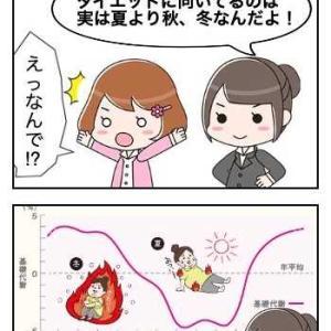 ダイエット漫画! 復活! again