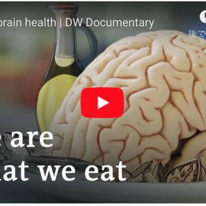 私たちは何を食べる? ダイエットは脳を救う。