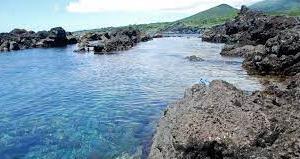 大島! 穴場だそうです。