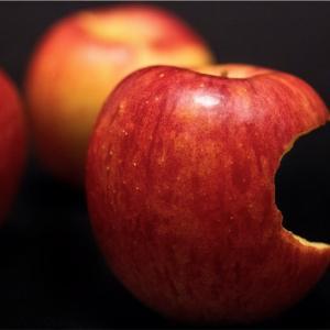 アダムとイブの禁断の果実〜現代に置き換えて考える〜