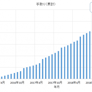 2019年5月 サラリーマンの収入(月収)と支出を公開