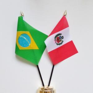 【W杯南米予選】第2節 ペルー ✕ ブラジル