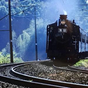 「SL鬼滅の刃」無限列車、撮ってきたよー!