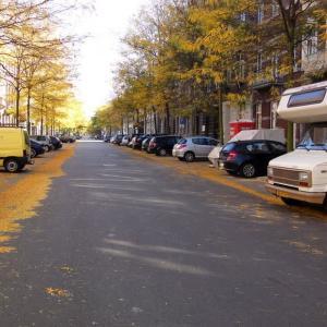 2010年 オランダ・マーストリヒトの秋 その2