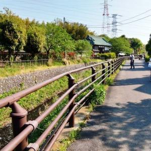 阿久和川沿いを散歩してみた