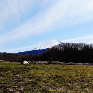 まだまだ開発の中のSTAR MEADOWS富士ケ嶺高原キャンプ場に行ってきた!