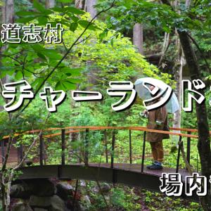 【キャンプ動画】ネイチャーランドオムの場内散策の動画とキャンプ動画を作りました