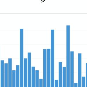 年間目標進捗:11月、歩数以外は低調…