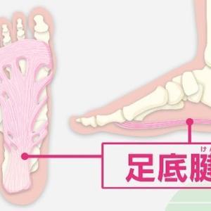 歩き過ぎた翌日の足裏の痛み、足底腱膜炎だったかも…(^^;)