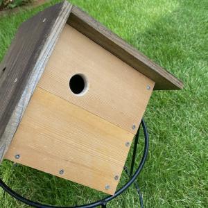 シジュウカラの巣箱、2年ぶりに補修した ♪