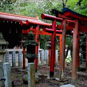 稲荷神社(下今任):250年前享保年間の大飢餓と大凶作を機に蛇面山に建てられたお稲荷様。