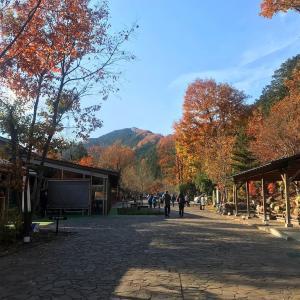 紅葉の秋川渓谷にお出かけ♫瀬音の湯を散策♨︎