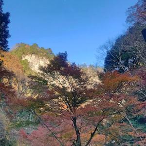檜原村のパワースポット・紅葉の神戸岩に行って来た!