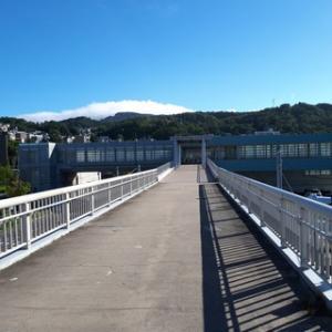 小樽は海も山も川もあって激安スーパーやショッピングモールもあり住みやすい街だった