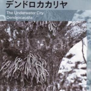 デンドロカカリヤ(安部公房)