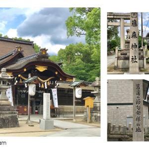 藤森神社のアジサイはまだ2分咲きくらいでした。