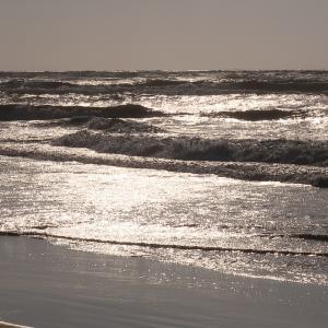 愛・地球博記念コンテストに参加する ~ 秋分の日の日本海