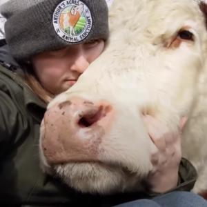親友である牛を引き取る為に何年も努力して自分のファームまで開設した女性