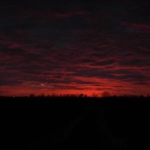 ポーランドの夕暮れの空に現れた不思議な光