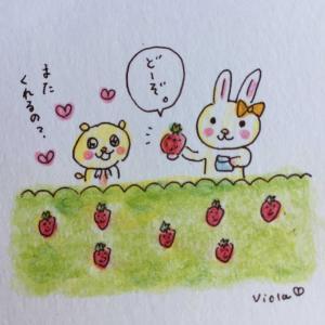 苺をどうぞ♡  🍓🍓