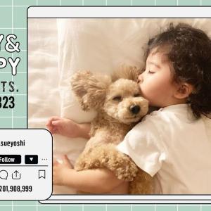 トイプードルと赤ちゃんの天使のような寝姿👼が可愛すぎた!!♡ [pepepets] #犬動画 #かわいい犬 #わんこ