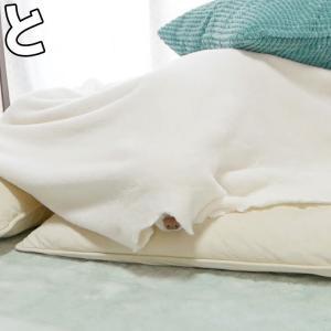 ママとの添い寝が大好きな可愛いチワワの幼虫 #犬動画 #かわいい犬 #わんこ