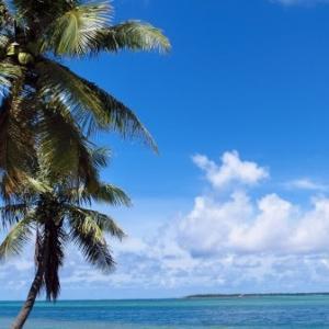水没危機といわれた島国ツバル、実際は国土が拡大していた
