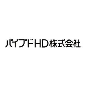 【3919】パイプドHD