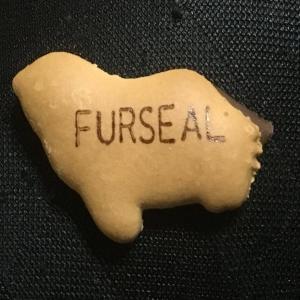 たべっ子どうぶつ「furseal」ってなんの動物?