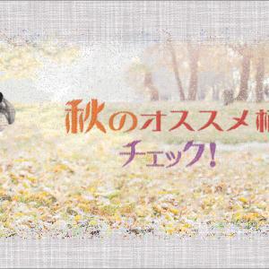 秋のチェックの犬用バンダナはいかがですか?