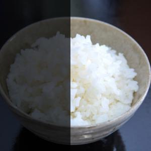 少量のごはん(お米)を美味しく食べるという選択肢【糖質制限ダイエット】