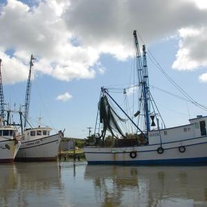 特定技能の「漁業」の概要