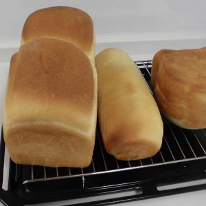 かわいい 猫の食パン