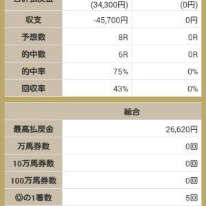 ネット競馬予想大会、俺プロ8月1週成績!