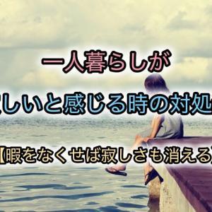 一人暮らしが寂しいと感じる時の対処法【暇をなくせば寂しさも消える】