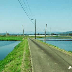 写真「EM121000-道」