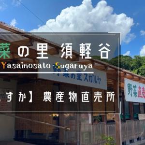 【三浦野菜直売所】『野菜の里 須軽谷』は農家直営の採れたて野菜専門店!