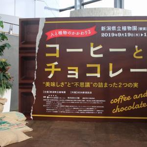 【新潟県立植物園】企画展示「人と植物のかかわり2 コーヒーとチョコレート」に行ってきました