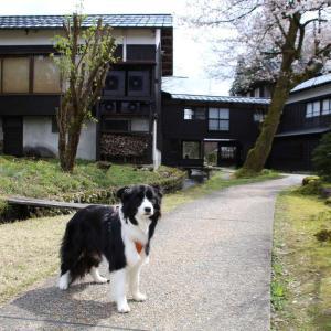 【Part72】嵐渓荘「真木の清水」