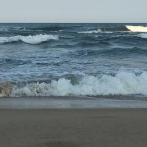 波乗り(サーフイン)したぞ!Lướt sóng!