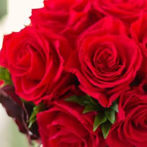 【祝8周年!】ソーシャルレンディング総利益は1,400万円超!より安全性を重視した運用にシフトします。
