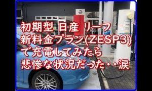 【悲惨】初期型リーフでZESP3の10分充電を事前体験してみた。【EV Life#75】