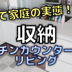 収納公開!キッチンカウンター背面とリビング 子育て家庭の収納実態【一条工務店i-smart】