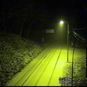 455号 雪⛄️