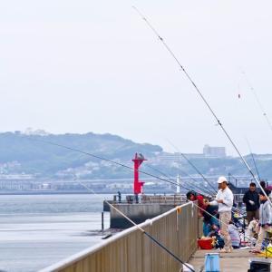 釣りライセンス制について割とまじめに考えてみた。